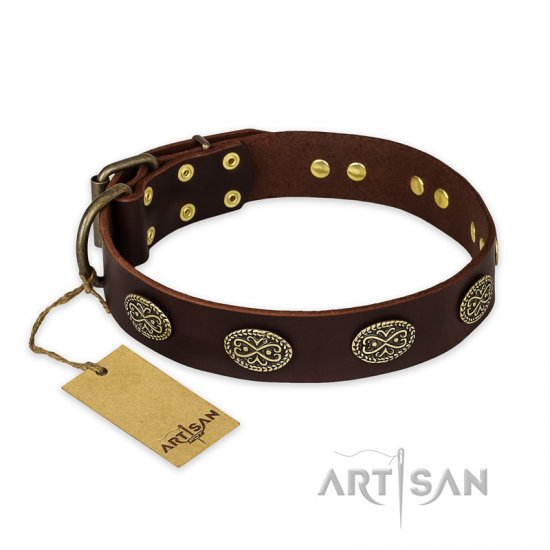 'Chocolate kiss' FDT Artisan Leather Pitbull Collar with Old Bronze Look Oval Plates
