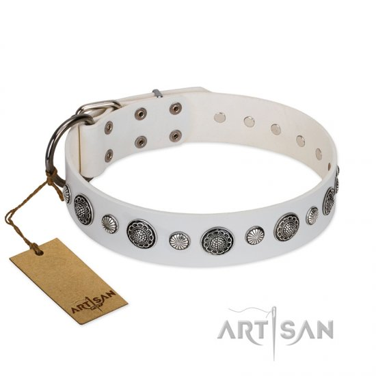"""Fluff-Stuff Beauty"" FDT Artisan White Leather Pitbull Collar with Silver-like Studs and Conchos"