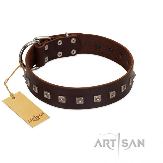 """Kingly Grace"" FDT Artisan Brown Leather Pitbull Collar with Silver-like Dotted Studs"
