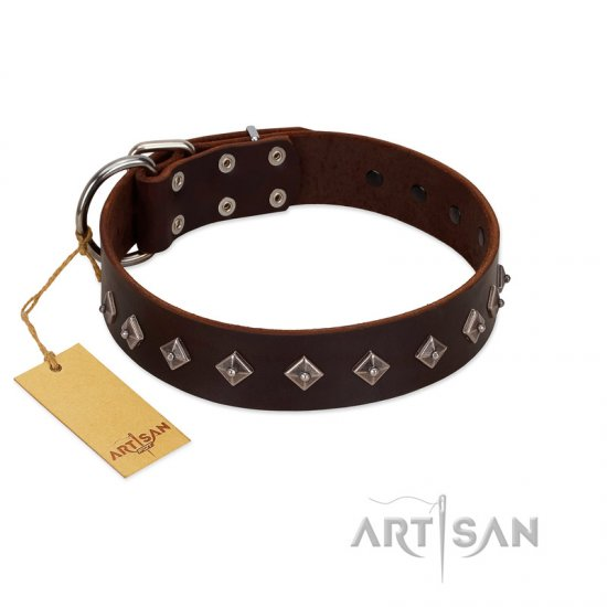 """Boundless Energy"" Premium Quality FDT Artisan Brown Designer Leather Pitbull Collar with Small Pyramids - Click Image to Close"
