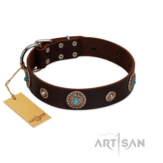 """Magic Stones"" FDT Artisan Brown Leather Pitbull Collar with Chrome Plated Brooches and Studs"