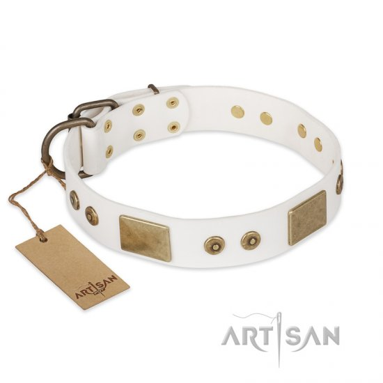 FDT Artisan 'Unforgettable Impress' Decorated Leather Pitbull Dog Collar with Decorations - 1 1/2 inch (40 mm)