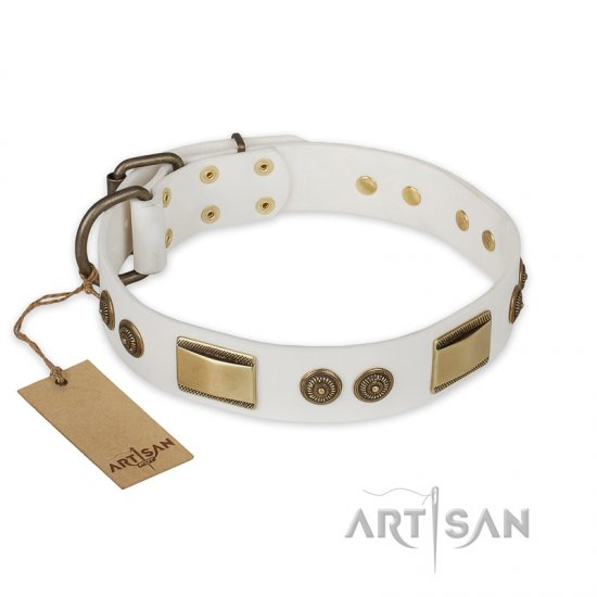 'Golden Avalanche' FDT Artisan White Leather Pitbull Dog Collar with Plates and Circles - 1 1/2 inch (40 mm) wide