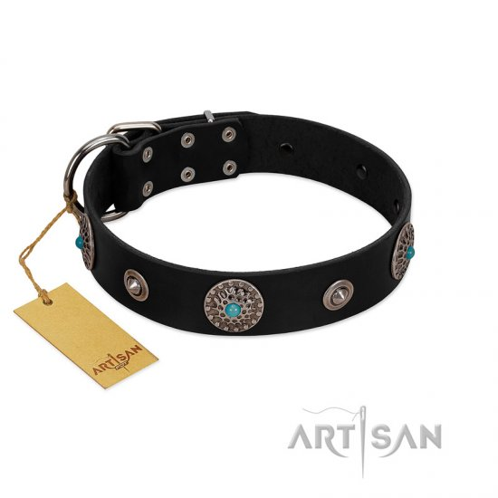 """Blue Gems"" FDT Artisan Black Leather Pitbull Collar with Chrome Plated Studs and Conchos"