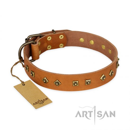 'Autumn Story' FDT Artisan Leather Pitbull Collar with Old Bronze Look Studs - 1 1/2 inch (40 mm) wide