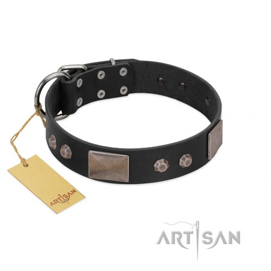 """Square Stars"" Modern FDT Artisan Black Leather Pitbull Collar with Square Plates and Studs"