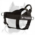 Nylon Search and Rescue Dog Harness with handle for Pitbull