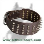Wide and Strong Pitbull Dog Collar with Nickel Spikes