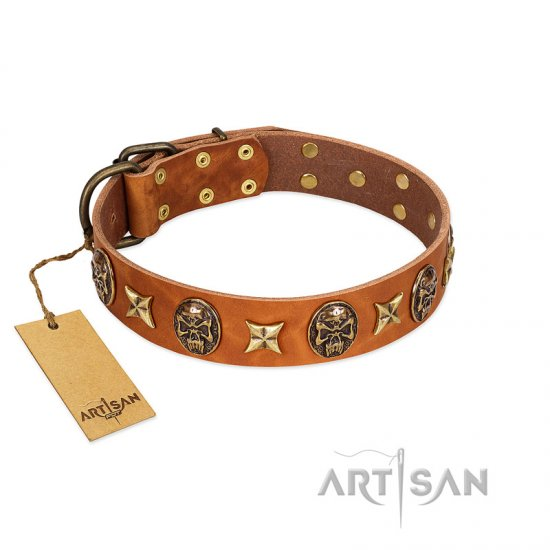 """Rockin' Doggie"" FDT Artisan Tan Leather Pitbull Collar Adorned with Stars and Skulls"