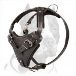 Black Leather Dog Harness for Pitbull