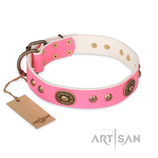 'Sensational Beauty' Wide FDT Artisan Pink Leather Pitbull Collar with Old Bronze Look Plates and Studs