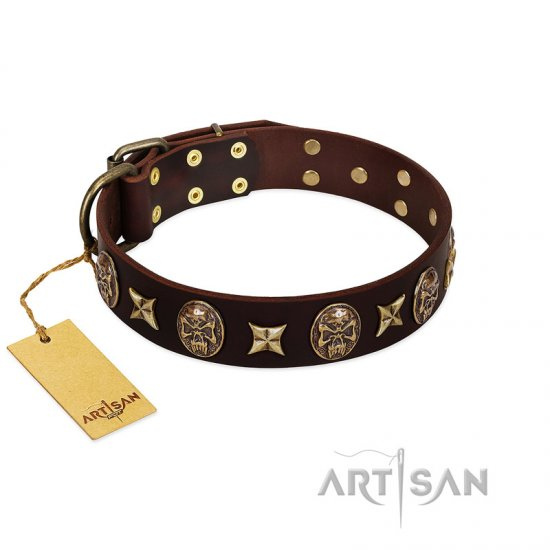 """Captain Hook"" FDT Artisan Brown Leather Pitbull Collar with Stars and Skulls"