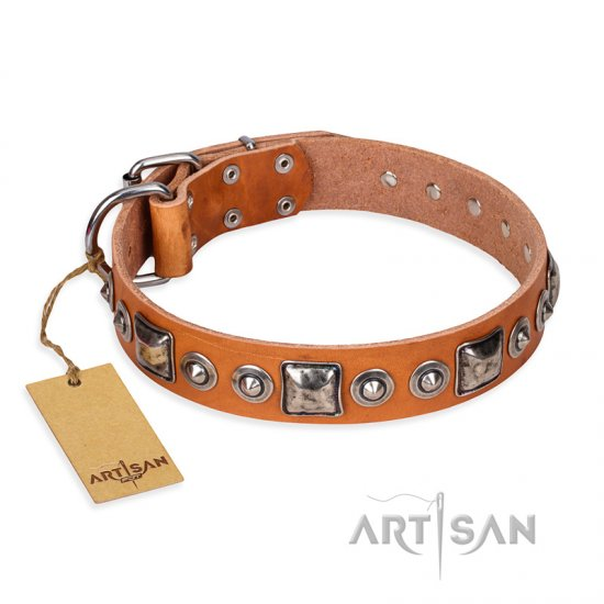 'Era of Future' FDT Artisan Handcrafted Tan Leather Pitbull Dog Collar with Decorations