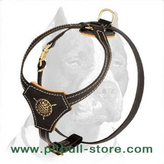 Durable and Fashionable Leather Harness for Pitbull Puppy