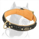 Beautiful Nappa Padded Hand Made Leather Pitbull Dog Collar