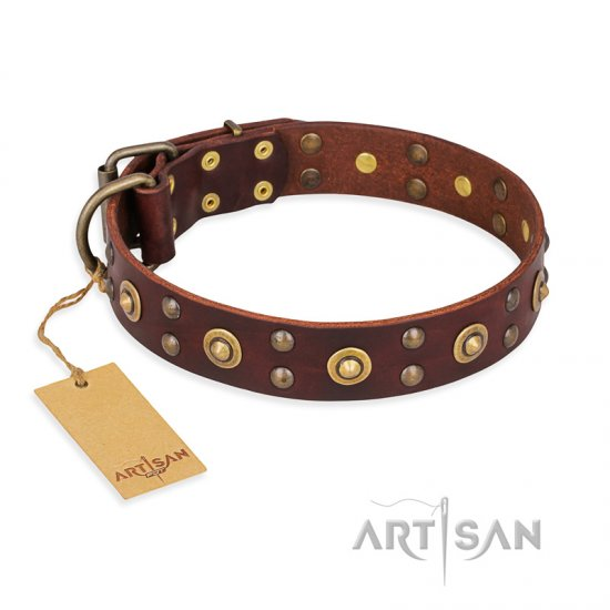 'Caprice of Fashion' FDT Artisan Pitbull Brown Leather Dog Collar with Round Decorations