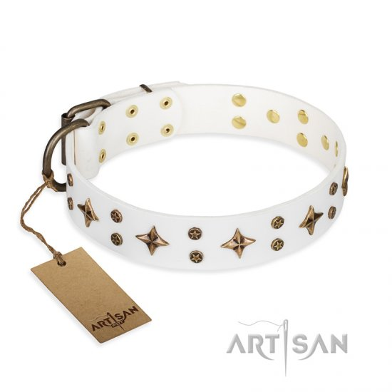 """Bright stars"" FDT Artisan White Leather Pitbull Collar with Elegant Adornment"