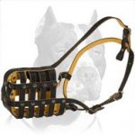 Padded Leather Super Ventilation Muzzle for Pitbull