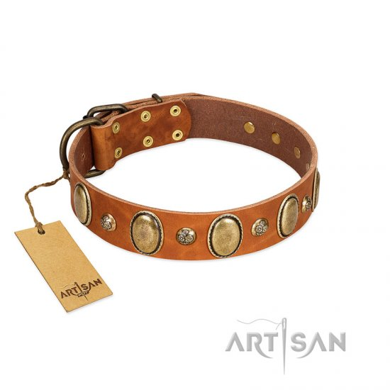 """Venus Breath"" FDT Artisan Tan Leather Pitbull Collar with Vintage Looking Oval and Round Studs"