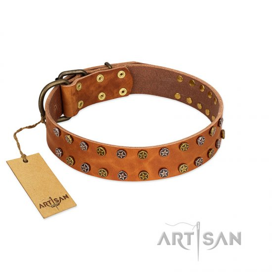 """Walk and Shine"" FDT Artisan Tan Leather Pitbull Collar with Antiqued Studs"