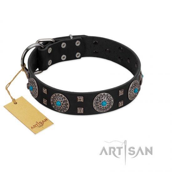 """Boundless Blue"" FDT Artisan Black Leather Pitbull Collar with Chrome Plated Brooches and Square Studs"
