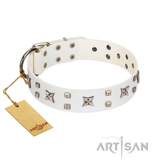 """Star Patrol"" FDT Artisan White Leather Pitbull Collar Adorned with Stars and Studs"