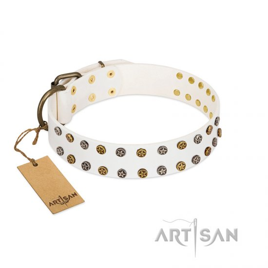 """Crystal Night"" FDT Artisan White Leather Pitbull Collar with Two Rows of Small Studs"
