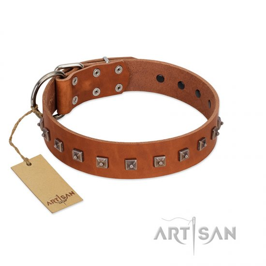 """Guard of Honour "" Designer FDT Artisan Tan Leather Pitbull Collar with Small Dotted Pyramids"