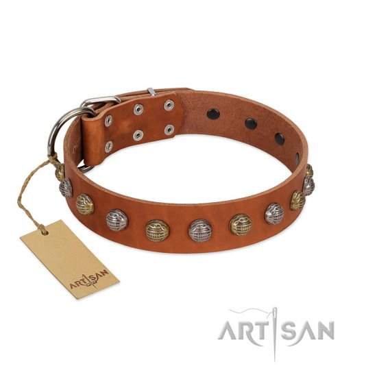 """Dogue-Vogue"" FDT Artisan Tan Leather Pitbull Collar with Engraved Chrome-plated Studs"