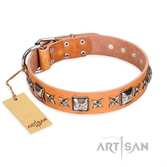 'Silver Chic' FDT Artisan Tan Leather Pitbull Collar with Silvery-plated Decorations
