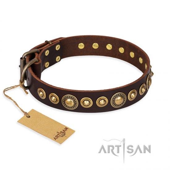 'Ancient Warrior' Pitbull Brown Leather Dog Collar