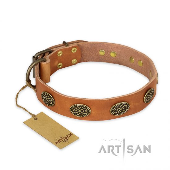 'Magic Amulet' FDT Artisan Tan Leather Pitbull Collar with Oval Studs