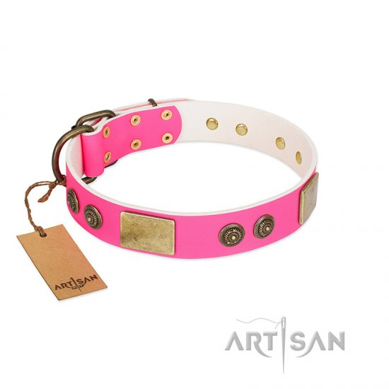 """Queen's Whim"" FDT Artisan Fancy Walking Pink Leather Pitbull Collar Adorned with Old Bronze-like Plates and Studs"