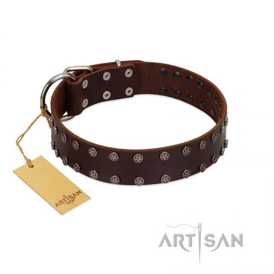 """Star Party"" Handmade FDT Artisan Brown Leather Pitbull Collar with Silver-Like Studs"