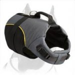 Pitbull Dog Harness for Winter activities and Rehabilitation