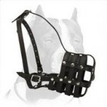 Super Ventilated Leather Muzzle for Pitbull