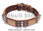 Leather Brown collar 25'' for PITBULL /25 inch dog collar-C86