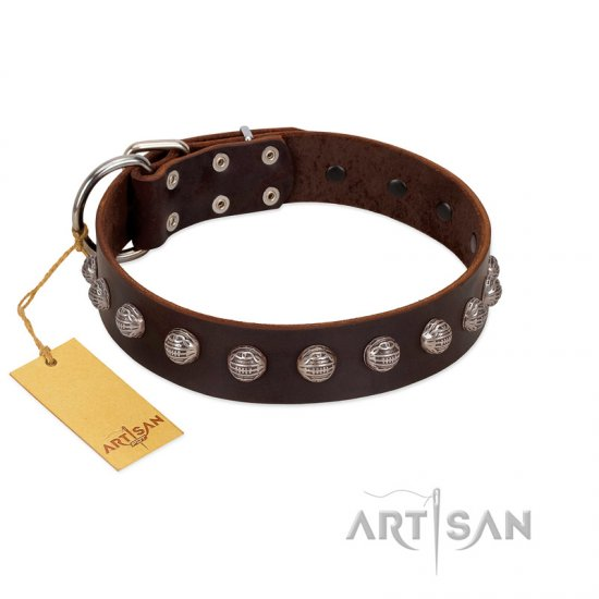 """Lucky Silver"" Designer Handmade FDT Artisan Brown Leather Pitbull Collar"