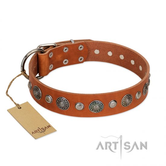 """Natural Beauty"" FDT Artisan Tan Leather Pitbull Collar with Shining Silver-like Studs - Click Image to Close"