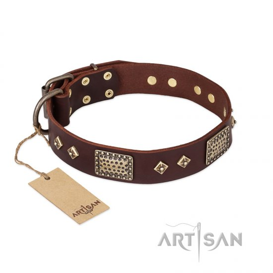 FDT Artisan 'Loving Owner' Decorated Leather Pitbull Dog Collar with Plates and Studs 1 1/2 inch (40 mm)