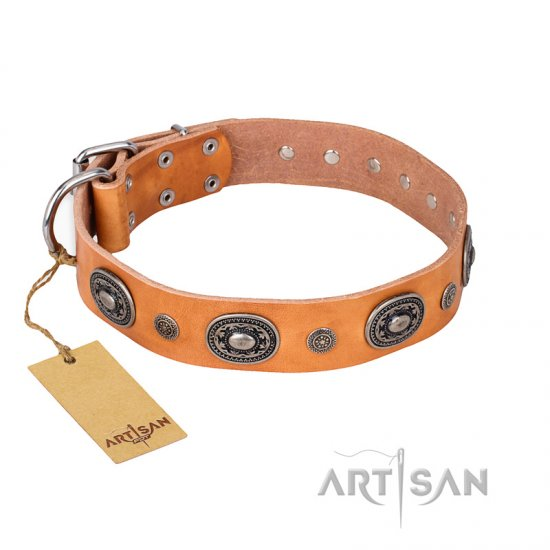 'Twinkle Twinkle' FDT Artisan Incredible Studded Tan Leather Pitbull Collar with Silver-Like Circles
