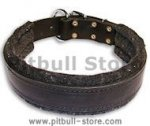 "Leather dog collar with thick felt for all breeds - 1.5"" width"