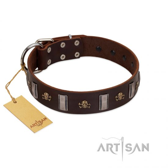 """War Chief"" FDT Artisan Genuine Brown Leather Pitbull Collar with Skulls and Plates"