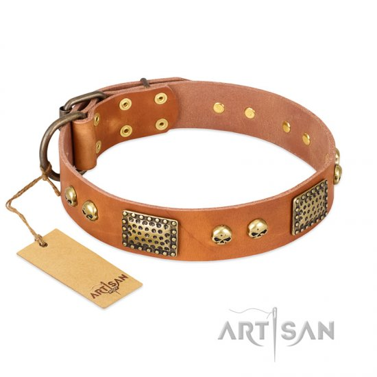 """Saucy Nature"" FDT Artisan Tan Leather Pitbull Collar with Old Bronze Look Plates and Skulls"