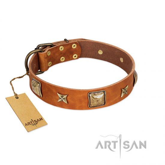 """Celtic Tunes"" FDT Artisan Tan Leather Pitbull Collar Adorned with Stars and Squares"
