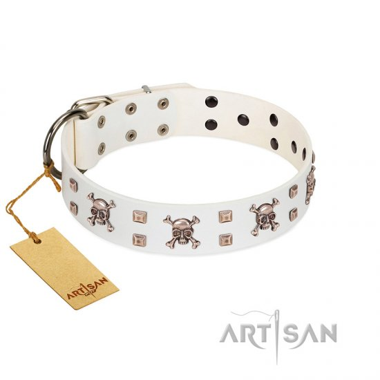 """Skull Island"" Premium Quality FDT Artisan White Designer Pitbull Collar with Crossbones and Studs"