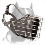 Top-quality Pitbull Full Padded Wire Dog Muzzle