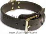 PITBULL 2 PLY Leather Black collar 21''/21 inch dog collar-c33nh