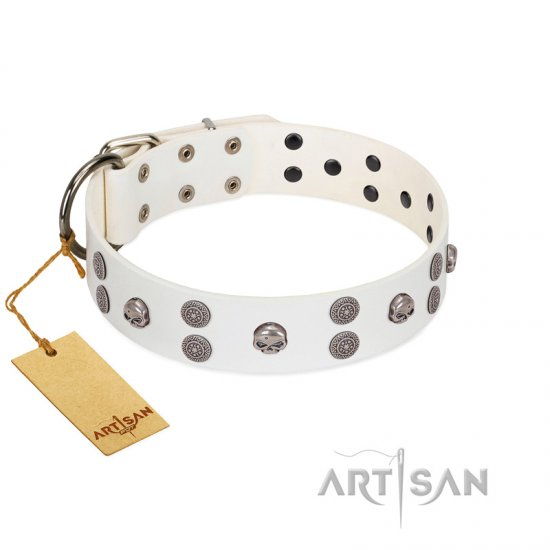 """Edgy Look"" FDT Artisan White Leather Pitbull Collar with Silver-like Skulls"