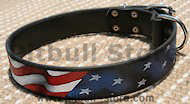 Hand painted by our artists leather dog collar - American Pride